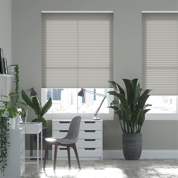 DuoLight Cordless Zinc Pleated Blind