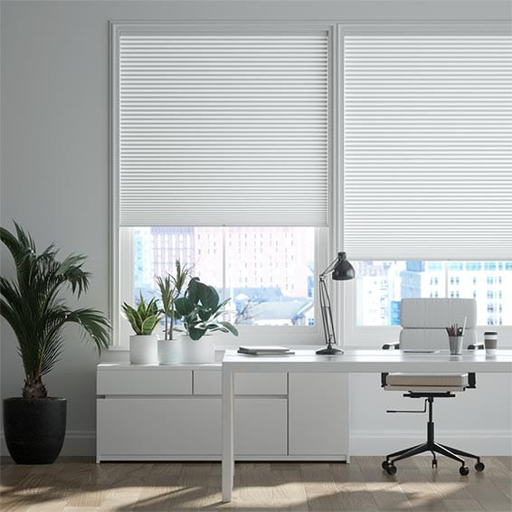DuoShade Cordless Chalk Pleated Blind