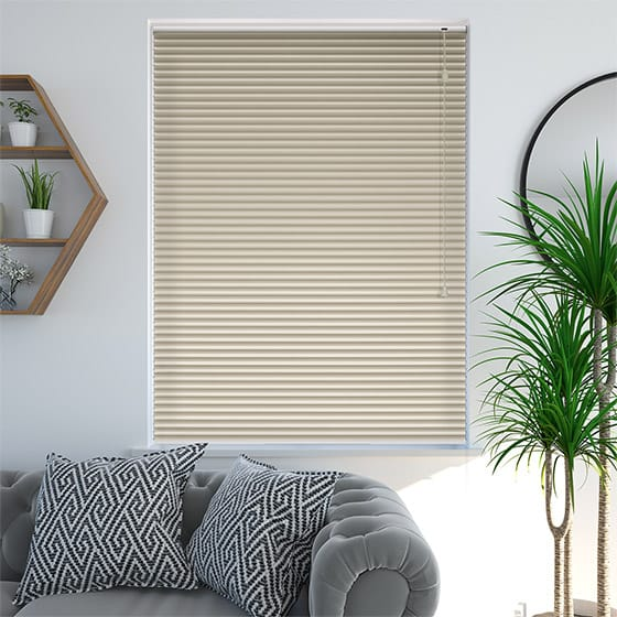 DuoShade™ Beige Pleated Blind